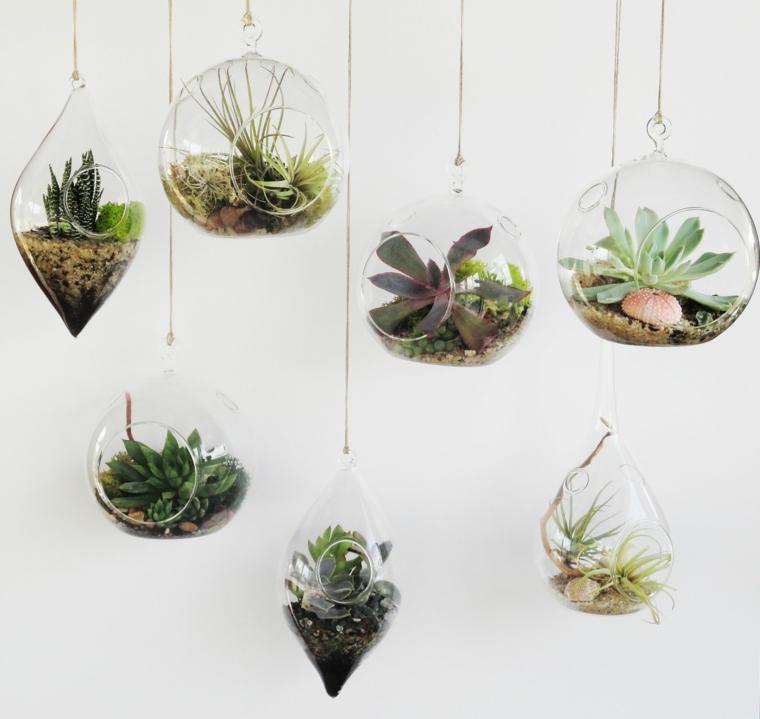 mini terrarium di vetro appesi dal soffitto decorazione casa con succulente