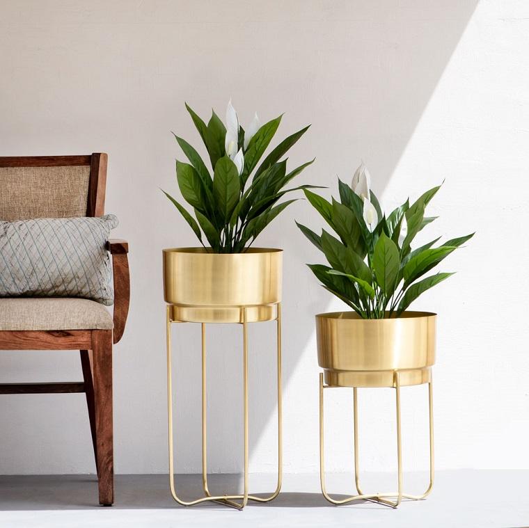 piante da interno a foglia larga soggiorno con pareti bianche vasi in metallo colore oro