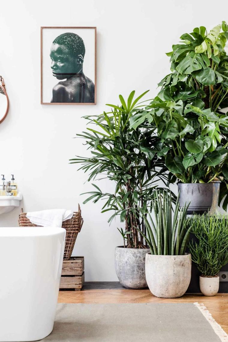 piante dalla foglia verde per bagno vasi di ceramica con pianta verde