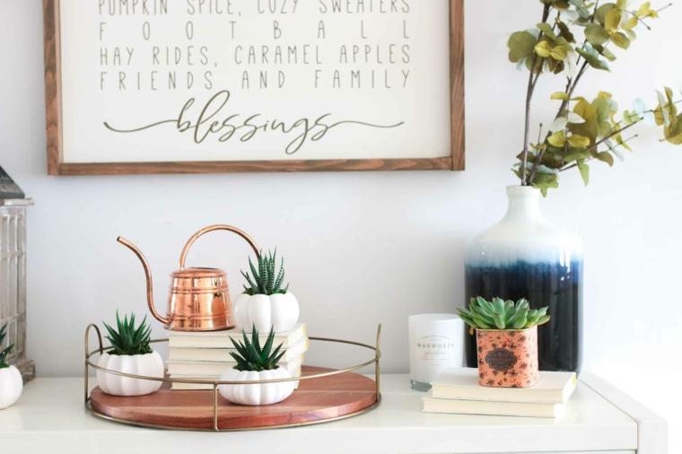 piante grasse da appartamento mobile soggiorno decorato con vasi