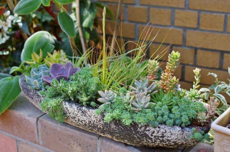 piante grasse da balcone contenitore vaso in cemento per succulente