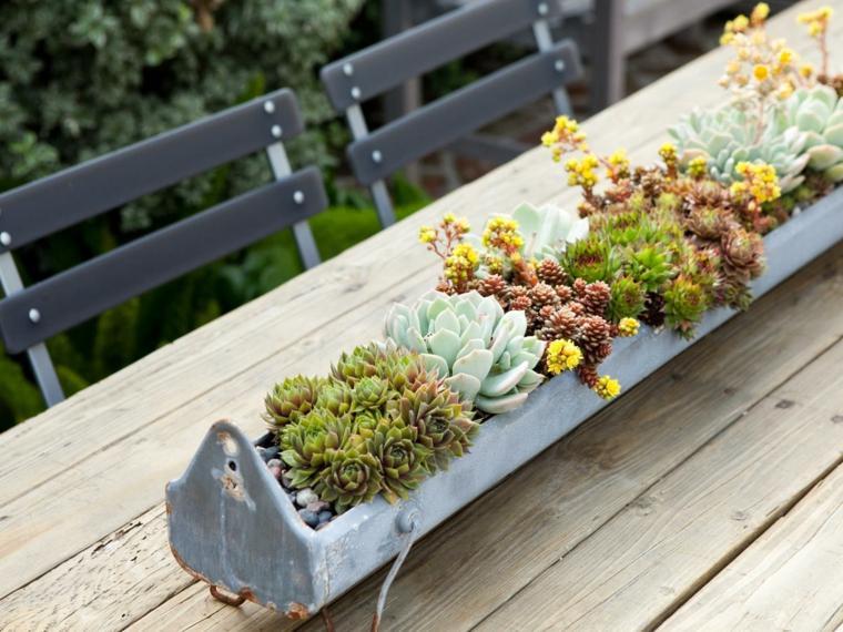 piante grasse da balcone tavolo di legno con centrotavola floreale