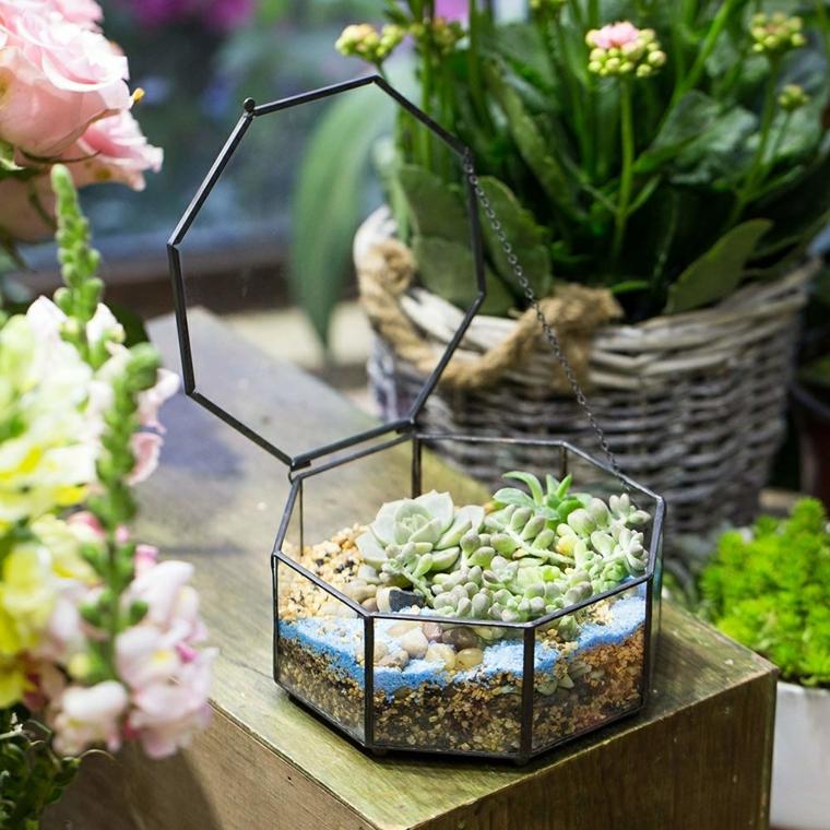 piante grasse da interno mini terrarium con succulente decorazione con piccoli sassi