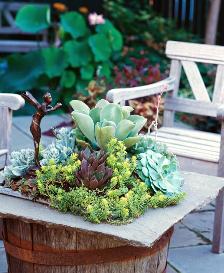 piante grasse senza spine da esterno decorazione giardino con succulente