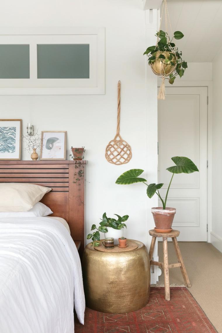 piante sempreverdi da interno camera da letto con vaso pianta foglia verde
