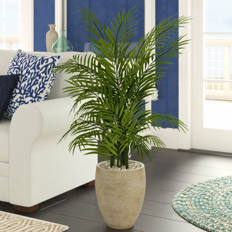 soggiorno decorato con mini palma da interno piante verdi indoor