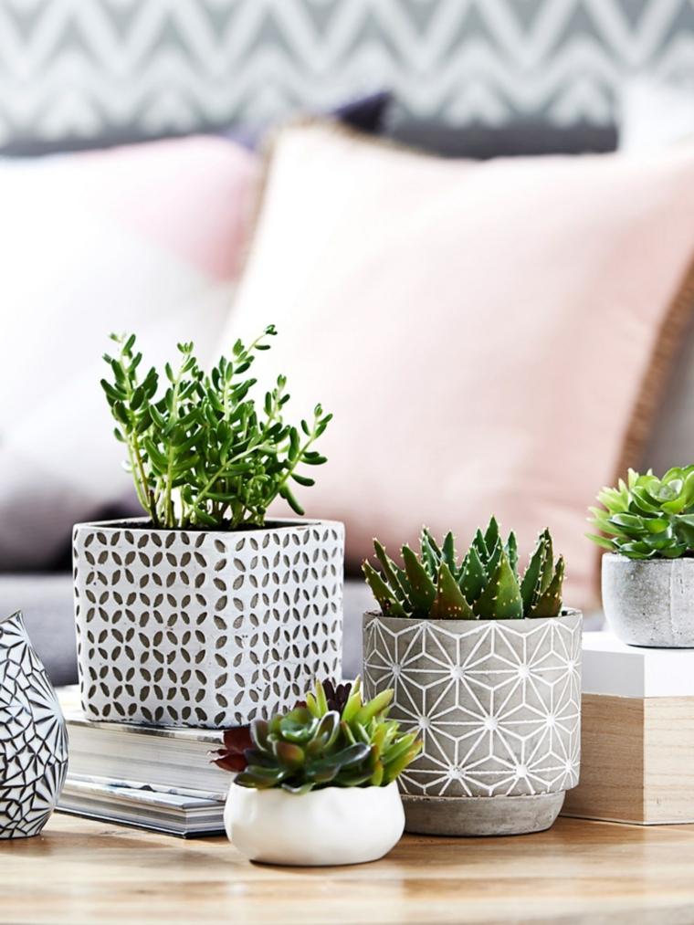 soggiorno decorato con vasi di succulente piante grasse senza spine