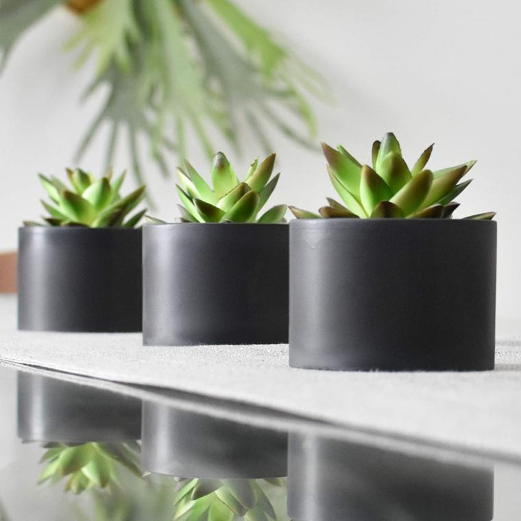tre vasi grigi con echeveria piante grasse da appartamento facili da curare