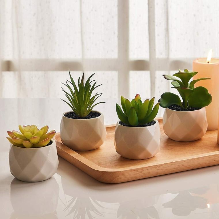 vasi bianchi di ceramica con piante succulente fiori con foglia verde