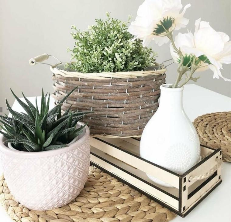 vaso bianco con aloe vera decorazione casa con piante succulente