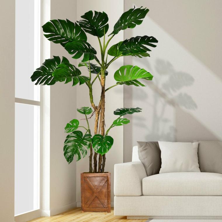 vaso con pianta monstera come abbellire una scala interna con piante