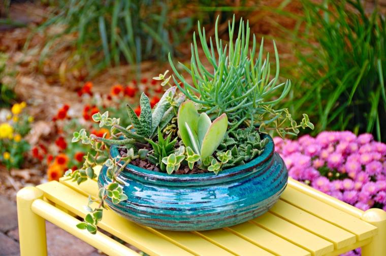 vaso di ceramica con piante grasse che fioriscono tavolino di legno giallo