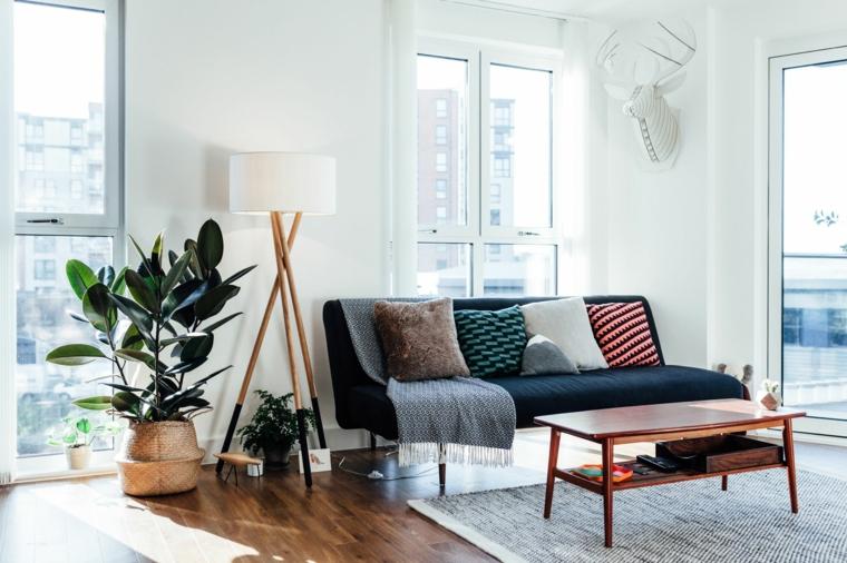 vaso grande con ficus piante appartamento poca luce soggiorno con pareti bianche