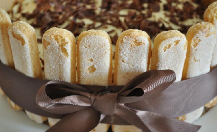 charlotte di tiramisù con nastro dolce con savoiardi e mascarpone