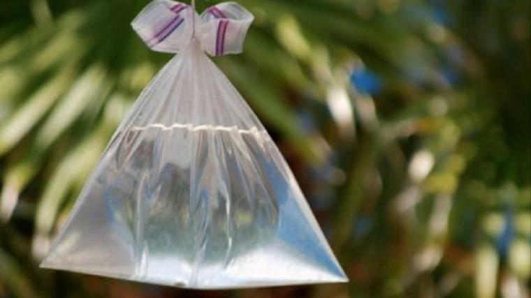 come allontanare le mosche sacchettino pieno di acqua