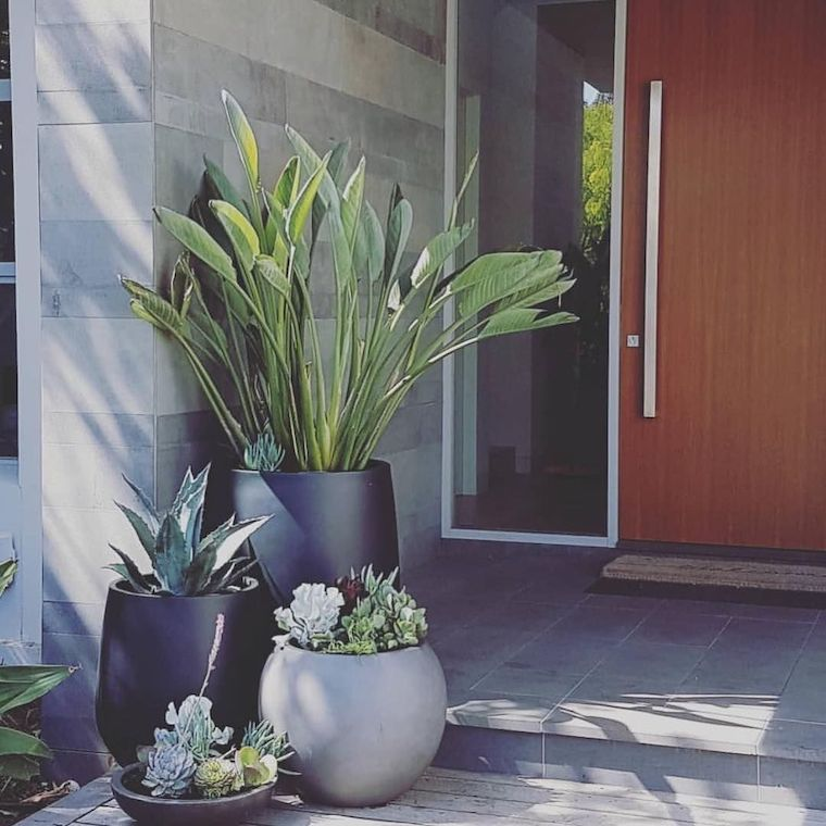 ingresso casa con vas da esterno piante sempreverdi