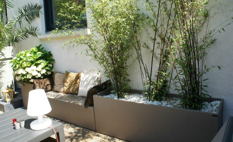 piante da giardino perenni che fioriscono outdoor con panchina di plastica