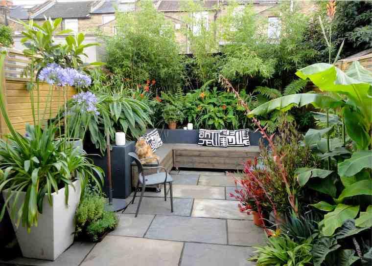 vasi con piante perenni dalla foglia verde panchina di legno con baule