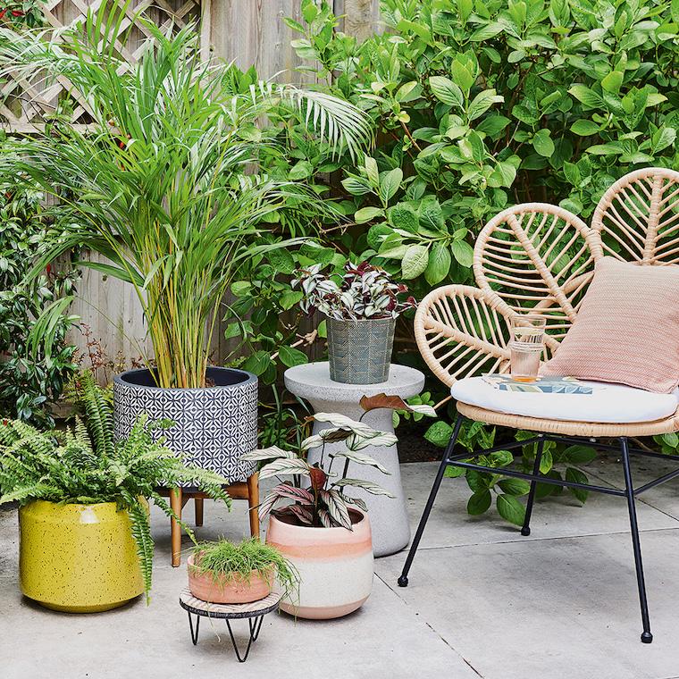vasi da esterno colorati sedia in rattan piante sempreverdi da esterno