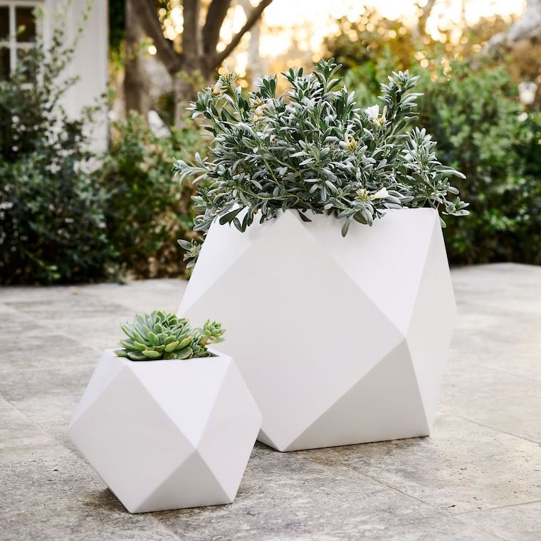 vasi di ceramica bianche da esterno piante sempreverdi da giardino