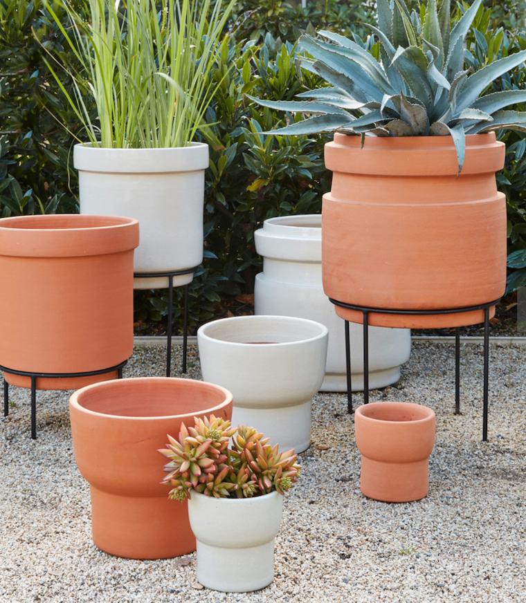 vasi di terracotta da esterno piante succulenti da giardino