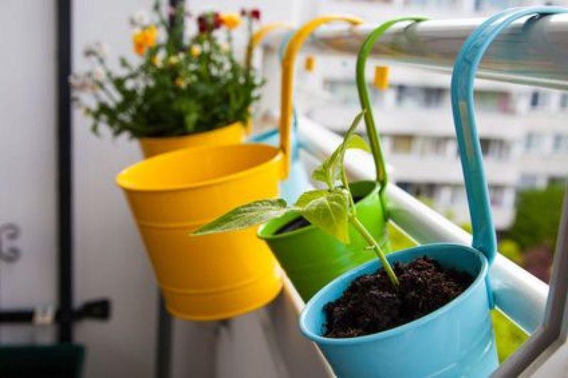 come abbellire un terrazzo ringhiera con vasi