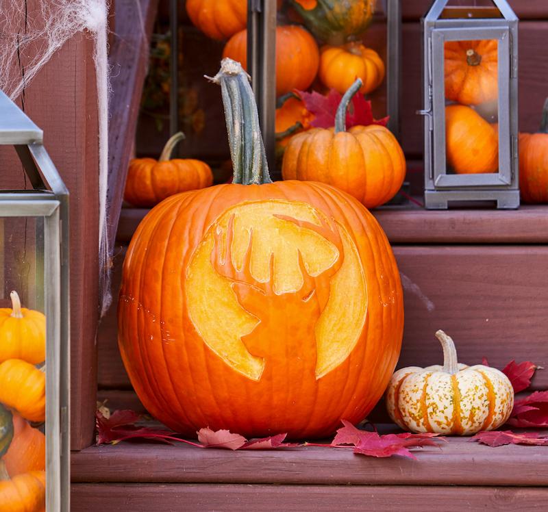zucca di halloween intagliata